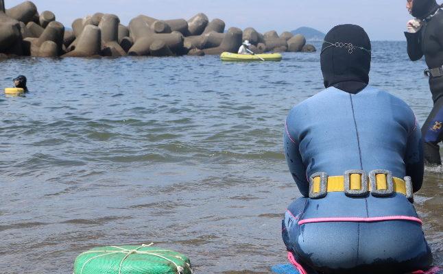 神島で海女さんと一緒に潜ろう&島内散策(1泊3食つき)