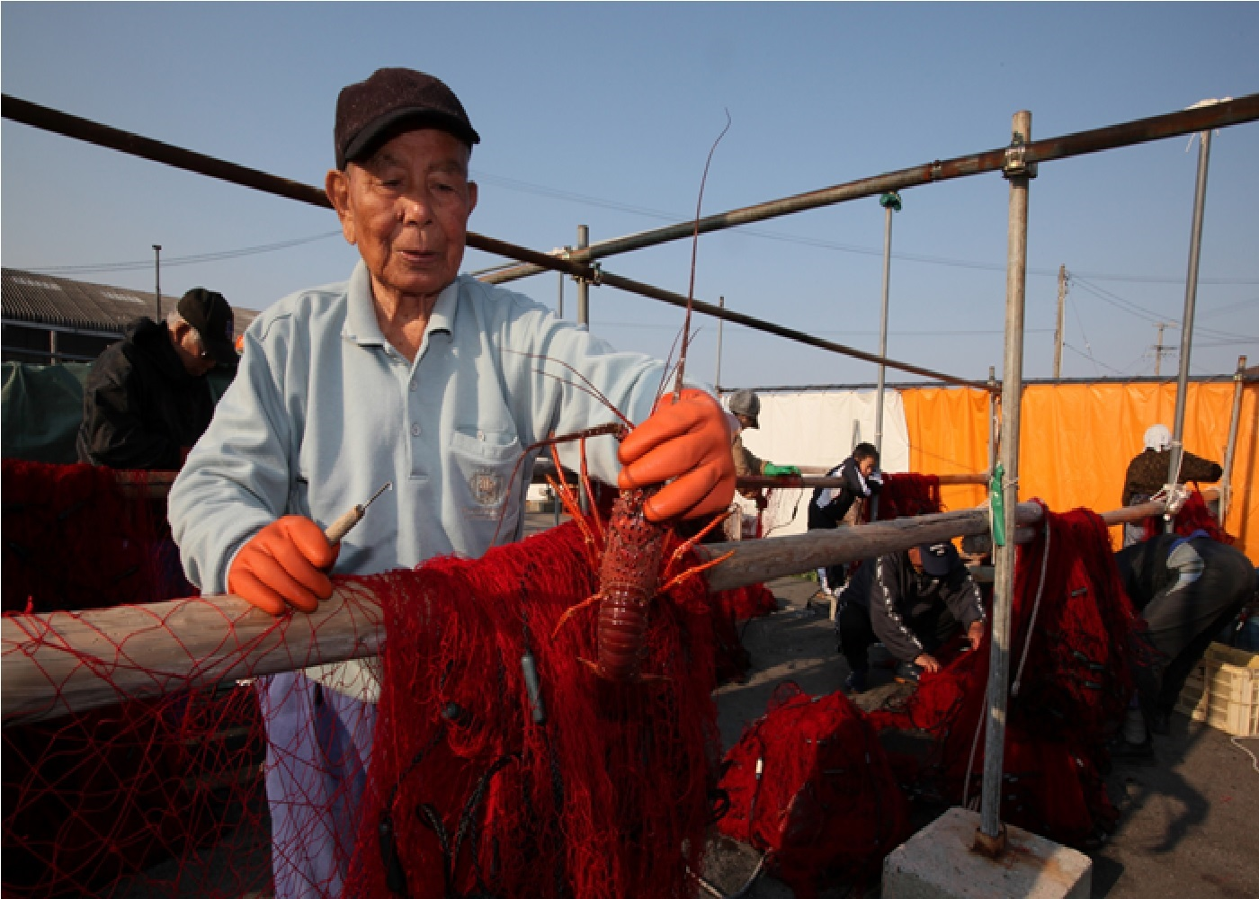 伊勢えび漁熟練の網さばき