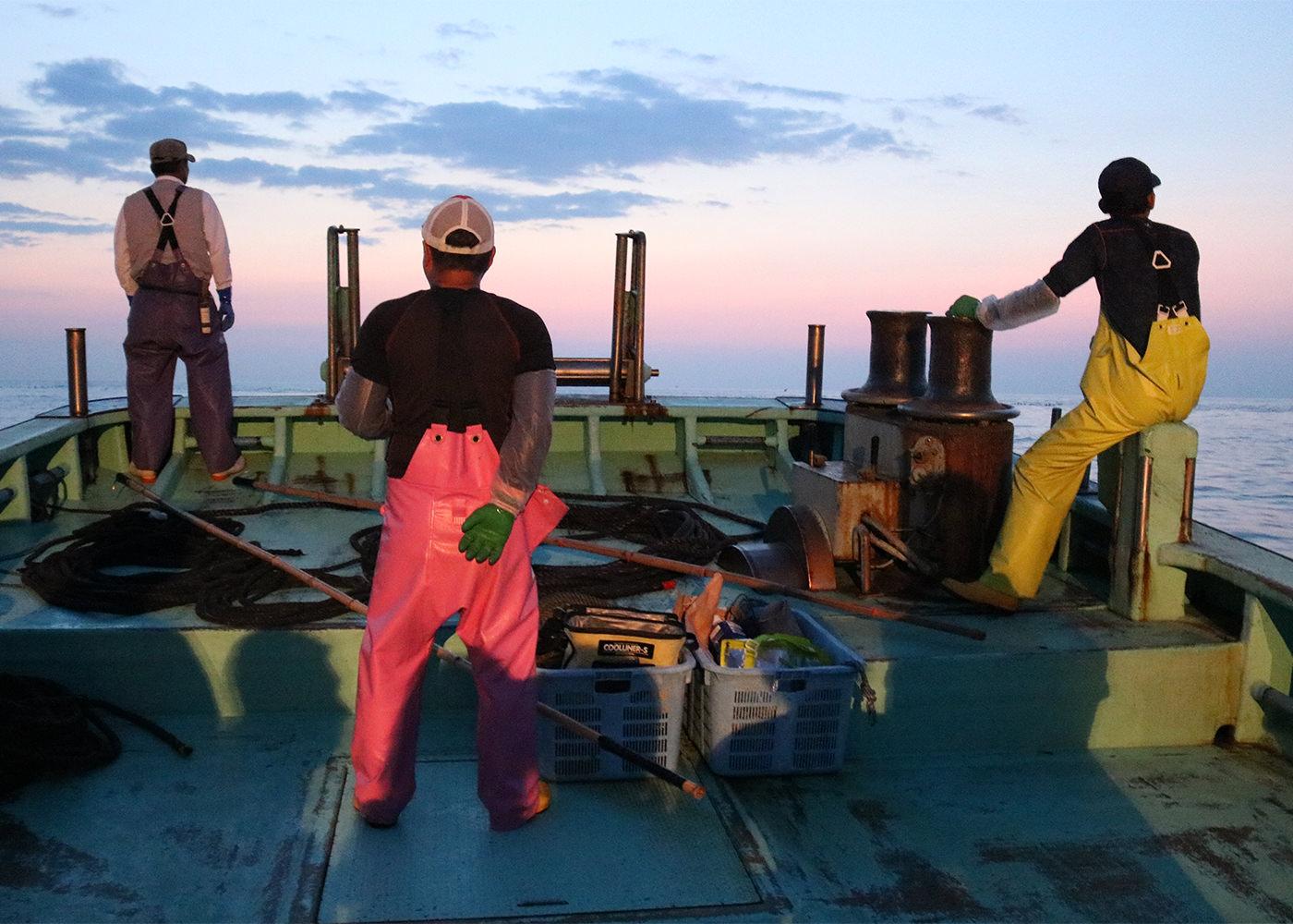 波切大敷網漁見学&漁師飯づくり