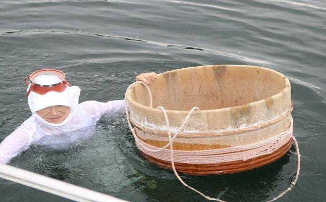 【海女ツアー】船で海女さんの漁見学