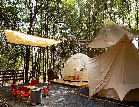 「TASO FOREST CAMP」 ※ご宿泊は2タイプよりお選びいただけます
