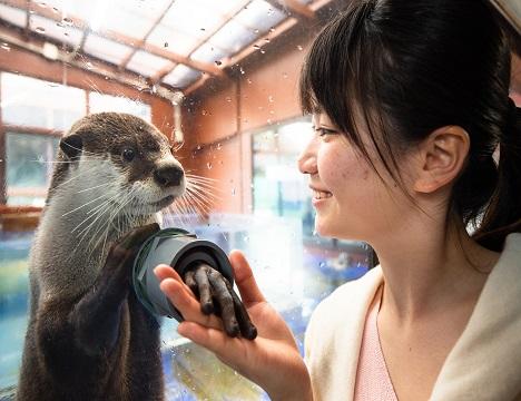 伊勢夫婦岩ふれあい水族館 / いろんな動物たちとスキンシップが取れる水族館です(別途料金)