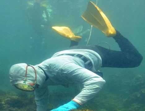 ⑦地元の海女さんも海中から進捗状況を確認します