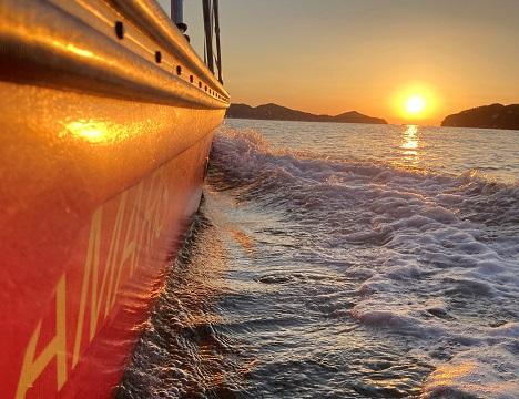 海面と目線が近い小型船なので、自然の醍醐味を体感できます!